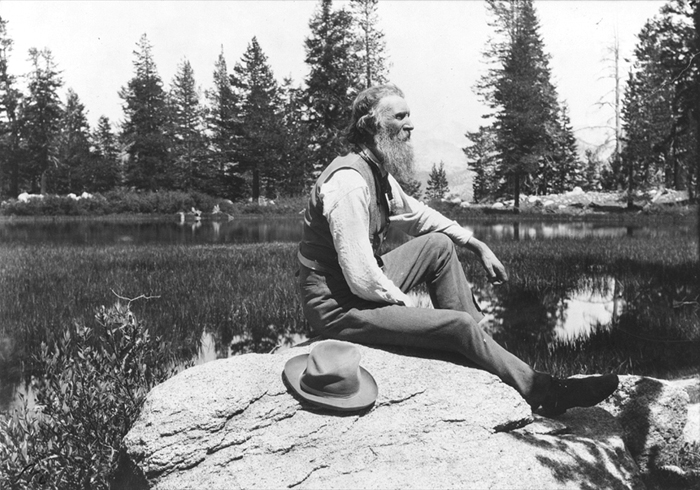 20 Inspiring Quotes from John Muir