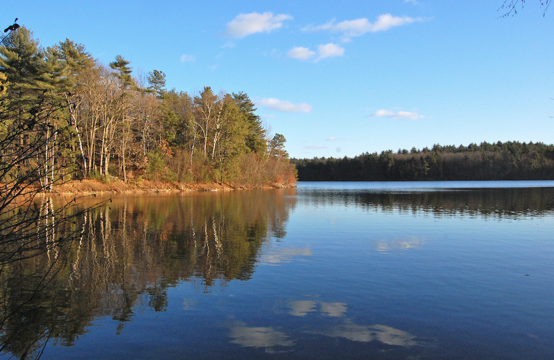 Happy Birthday Thoreau—How The Life Lessons in 'Walden' Are Invaluable