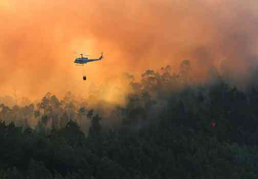 Science Says: Climate Change Doubled Forest Fires